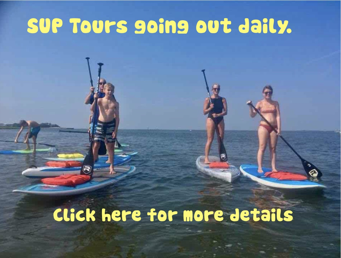 Standup paddleboard tours going out daily